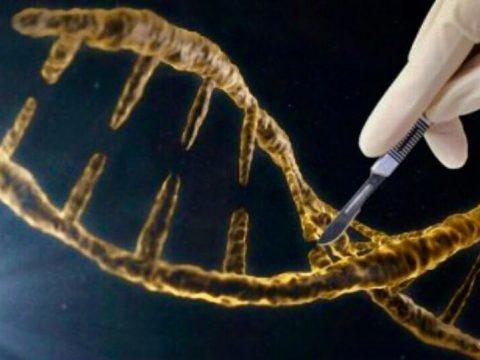 修復缺陷基因